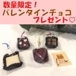 バレンタインのチョコレートプレゼント♡