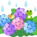 雨の日こそチャーンス☆