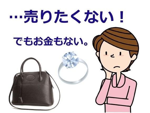 shichi1